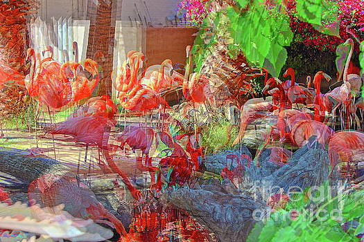 Flamingo Abstract by Natalie Ortiz