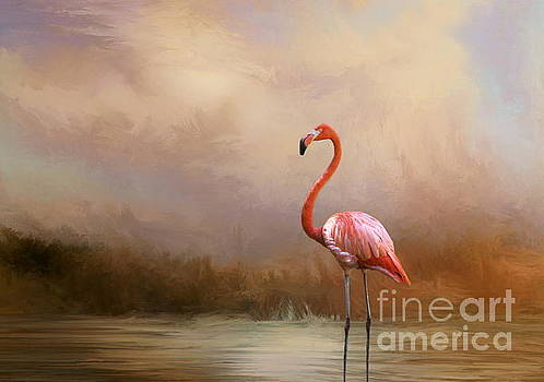 Flamingo Beauty by Myrna Bradshaw