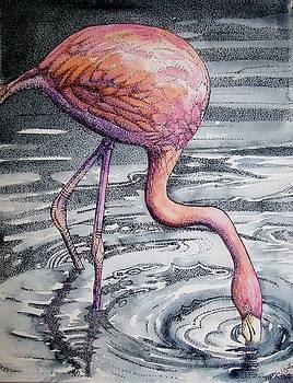 Flamingo Fishing  II by Martha Ayotte