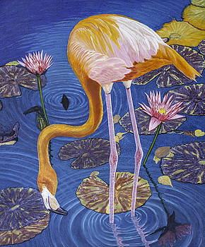 Manuel Lopez - Flamingo