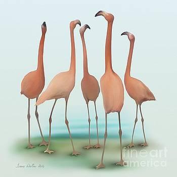 Flamingo Mingle by Ivana Westin