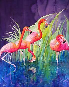 Flamingo Night by Violeta Damjanovic-Behrendt
