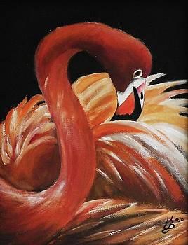 Flamingo Portrait by Kim Selig