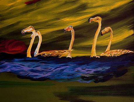 Flamingoes Swim African Birds by Gregory Allen Page
