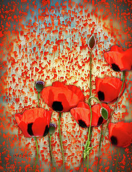 Valerie Anne Kelly - Flanders fields