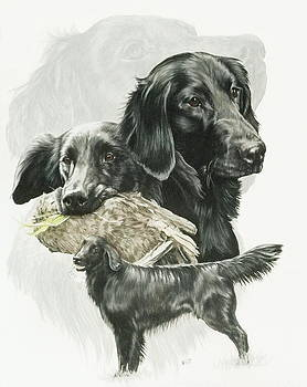 Flat-Coated Retriever and Ghost by Barbara Keith