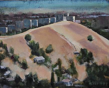 Flat Top by Richard Willson