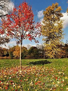 Fleeing Autumn        Mishawaka Riverwalk                Indiana by Rory Cubel