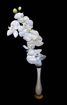 Fleur Blanche by Cecil Fuselier