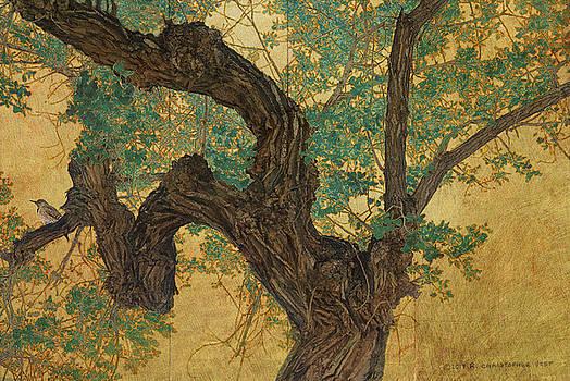 Flicker In Cottonwood Tree Gold Leaf Panel by R christopher Vest