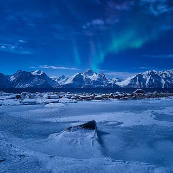 Flicker by Tor-Ivar Naess