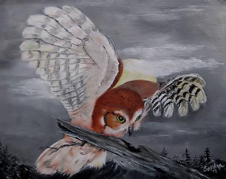 Flight By Moonlight by Sandra Maddox
