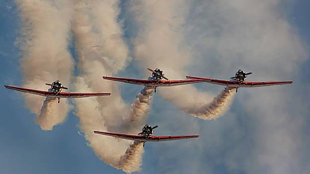 Susan Rissi Tregoning - Flight of Four