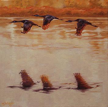 Flight of Icarus by Katy Widger