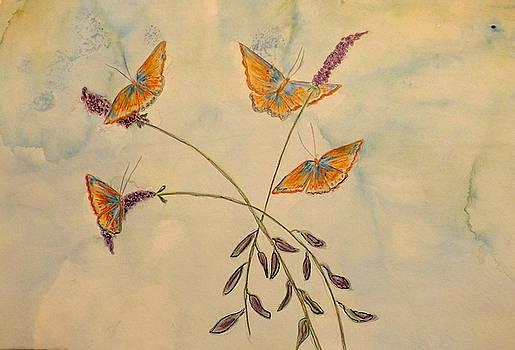 Flight Of The Butterflies by Carolyn Jackson