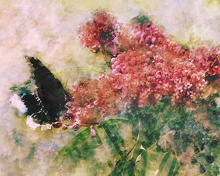 Flight of the Butterfly by Megan Nicole McKinney