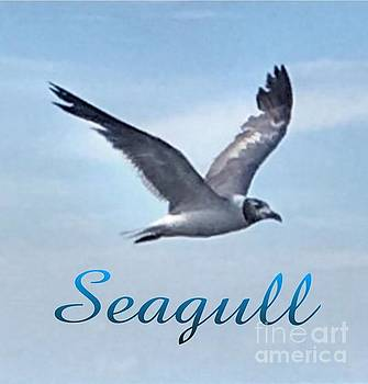 Flight of the Segull by Gayle Price Thomas