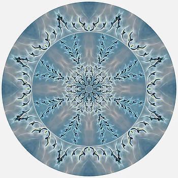 Flight of the Tundra Swan Mandala by Beth Sawickie