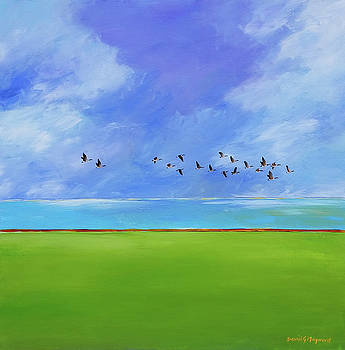 flight over Erie  by David Maynard