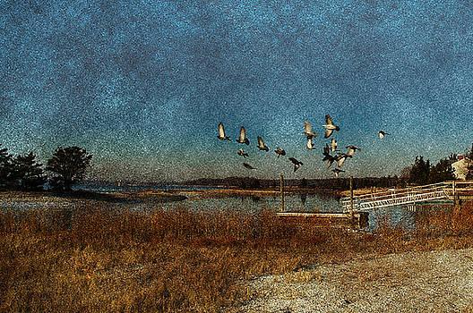 Flight by Tori Yule