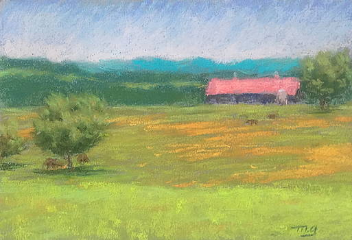 Flint Hills Farm by Michael Gillespie