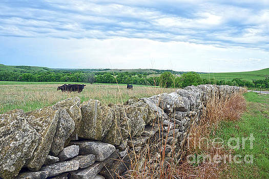 Flint Hills, Kansas, Stone Fence by Catherine Sherman