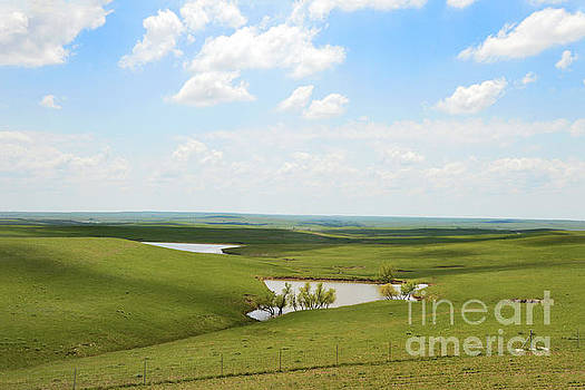 Flint Hills Ponds by Catherine Sherman