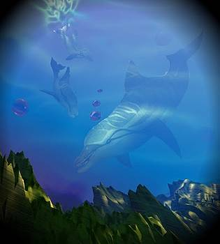 Flipper three by Darren Cannell