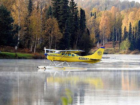Float Plane Landing by Sherry McKellar