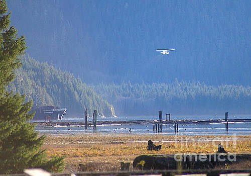 Float Plane Take Off by Stanza Widen