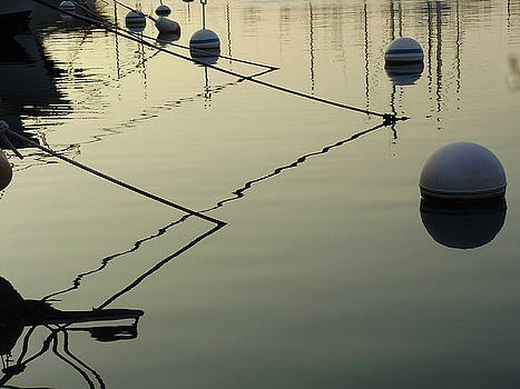 Floating Lines by Keelee Martin
