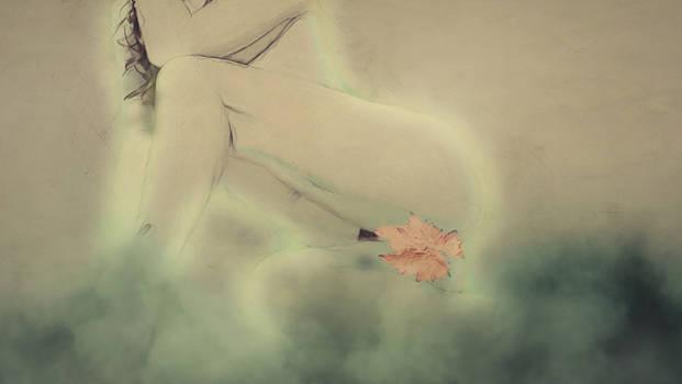 Flor by Ivan Gomez