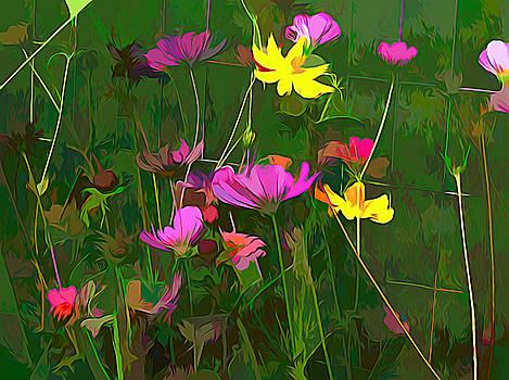 Floral Display by Debra Lynch