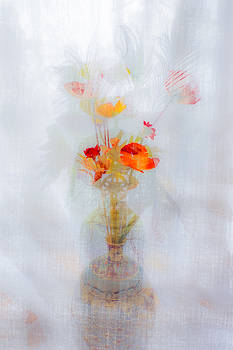 Floral Dream by Tylie Duff