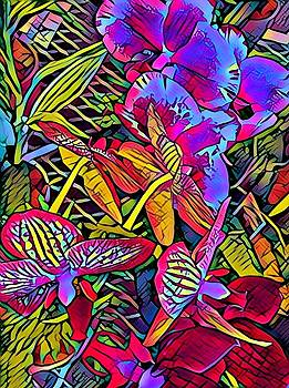 Floral Fabuloso by Patricia Rex