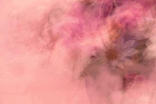 Carolyn Jacob - Floral Fantasy in Pink