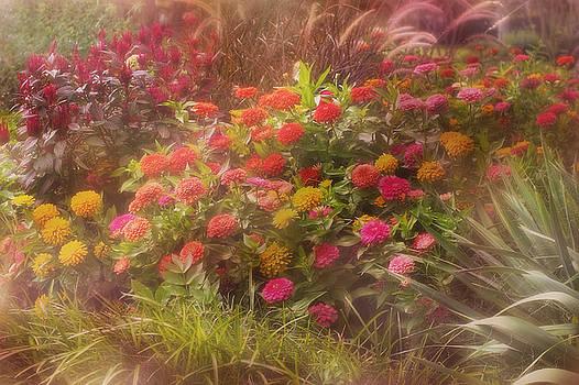 Floral Garden by Joan Bertucci