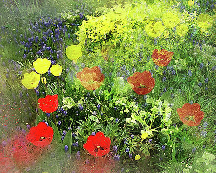 Floral by Judi Saunders