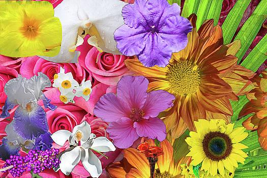 Floral Multitude by Gene Norris