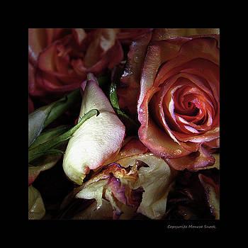 Floral Rose by Monroe Snook