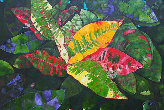Floral Series 14 by Steven Fleit