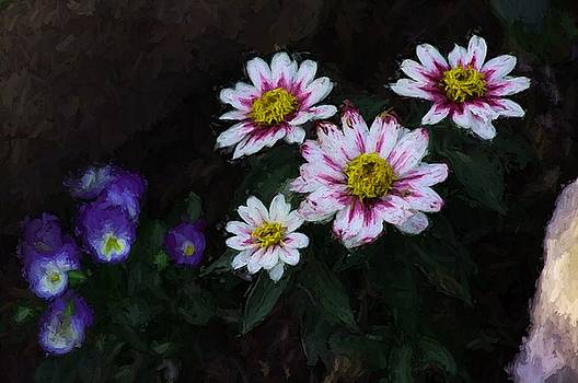 Floral  by Shehan Wicks