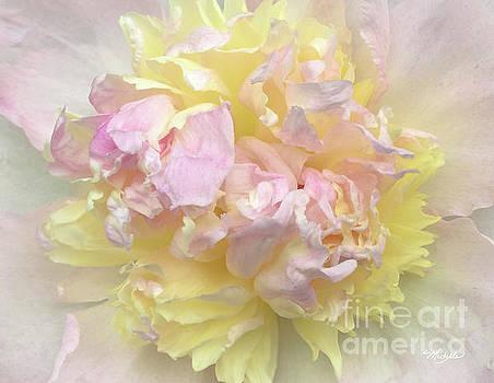 Michelle Constantine - Floral Sunrise