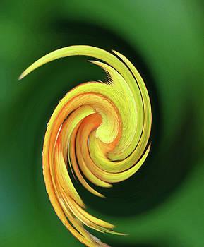 Floral Swirl 10 by Margaret Saheed