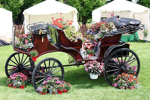 Floral Wagon Parade by Reni Boisvert