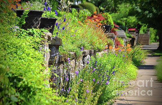 Jost Houk - Floral Walk