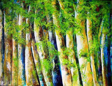 Floresta Amazonica VI by Fernanda Cruz