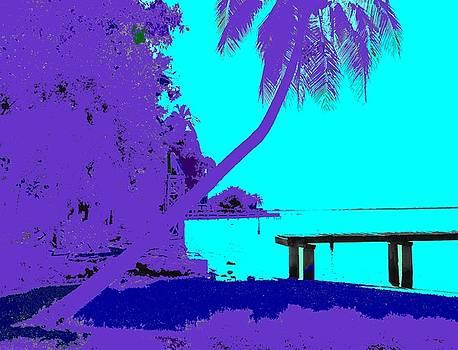 Ian  MacDonald - Florida Blues