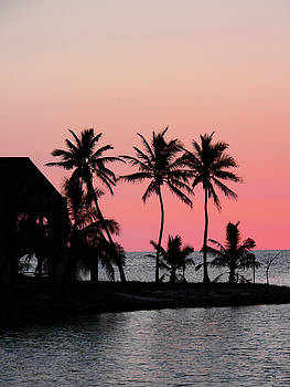 Florida Keys Sunset by Kathy K McClellan