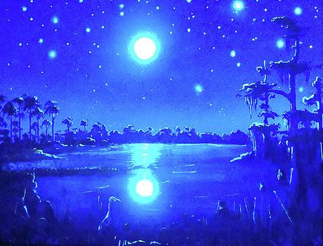 Florida Magic Moon by Thomas Lenz